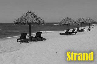 Reisepartner Strandurlaub