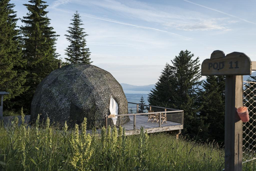 Whitepod Hotel in Monthey #1