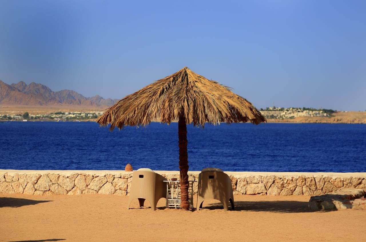 gypten 7 tage im 4 sterne hotel labranda tower bay mit. Black Bedroom Furniture Sets. Home Design Ideas