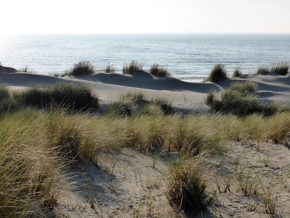 Beitrag Zandvoort
