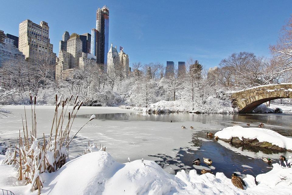 NY Beitrag Winter