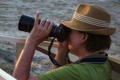 Serengeti - große Migration und River-Crossing
